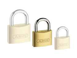 Recorded Master Key Padlock 40mm