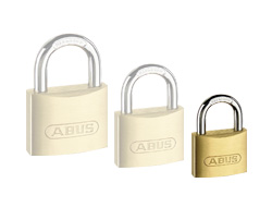 Recorded Master Key Padlock (30mm)